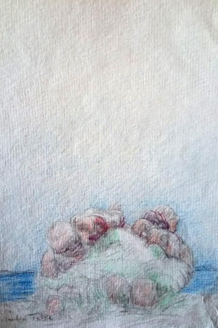 Claudia Tübke Zeichnungen